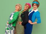 Drei Damen vom Dohlengässle