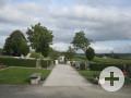 Friedhof Menningen