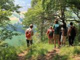 Wanderung im Donaubergland